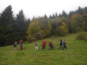 Berger des Montagnes 7-11 ans